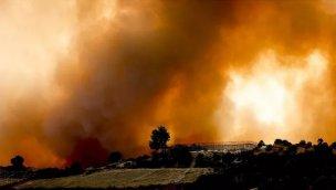 Yangın, Manavgat turizmine 3 milyon dolarlık zarar verdi