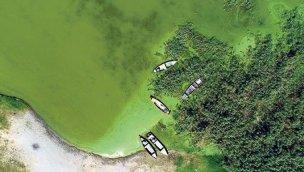 Uluabat ve Eğirdir gölleri için tehlike çanları çalıyor!