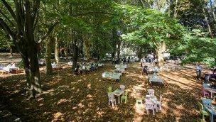MESA Orman II projesi doğaseverlere ev sahipliği yaptı