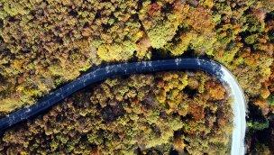 Gölcük Tabiat Parkı'nda sonbahar renkleri hakim